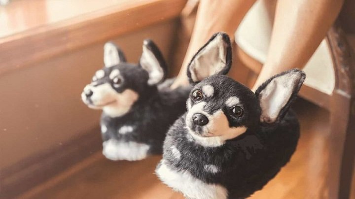 Pet Slippers That Look Just Like Your Dog